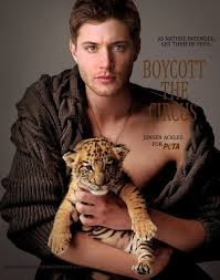 God, I don't know who's cuter: Jensen Ackles or the little baby tiger...